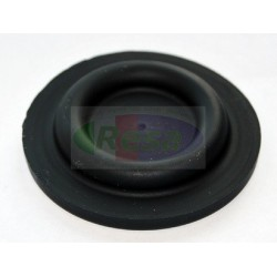 Membrana per DV5-DV4 corr. GM 381667